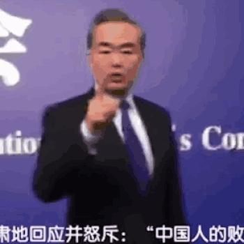 Wang Li